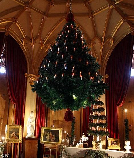Christmas Trees Victoria