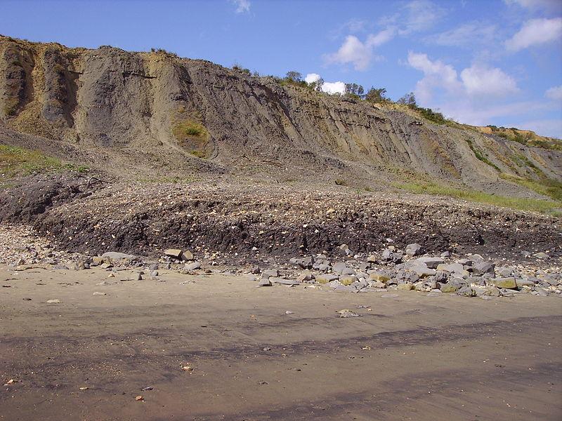 A beach near Lyme - licensed under GNU Free Documentation 1.2
