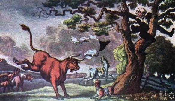 Regency bull