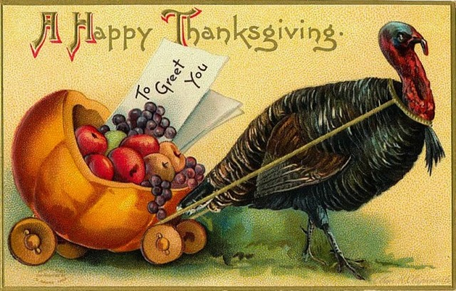 20 Funny and Cute Vintage Thanksgiving Postcards ~ vintage ...